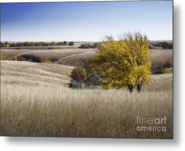 Flint Hills Autumn 013 Metal Print