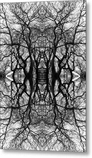 Tree No. 11 Metal Print