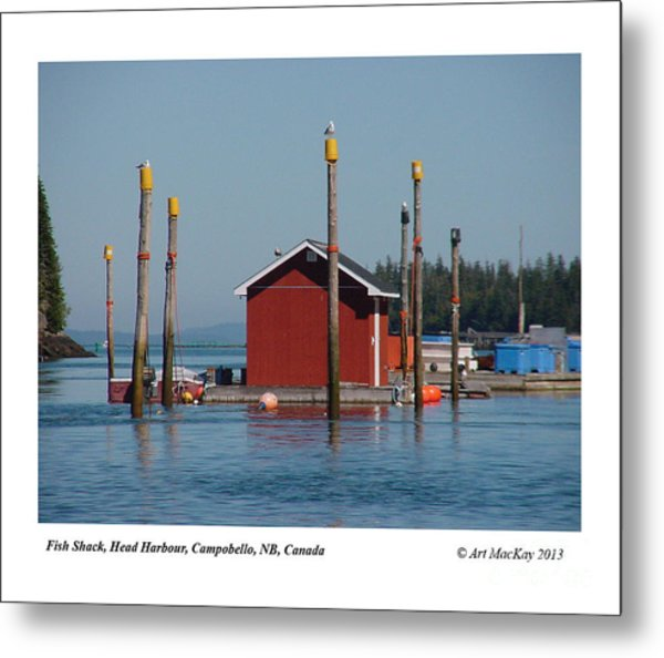 Floating Fish Shack Bay Of Fundy Nb Metal Print