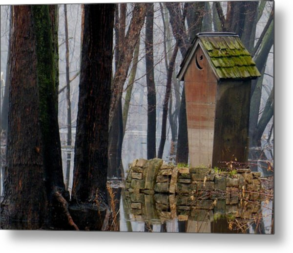 Foggy Swamp Outhouse Metal Print