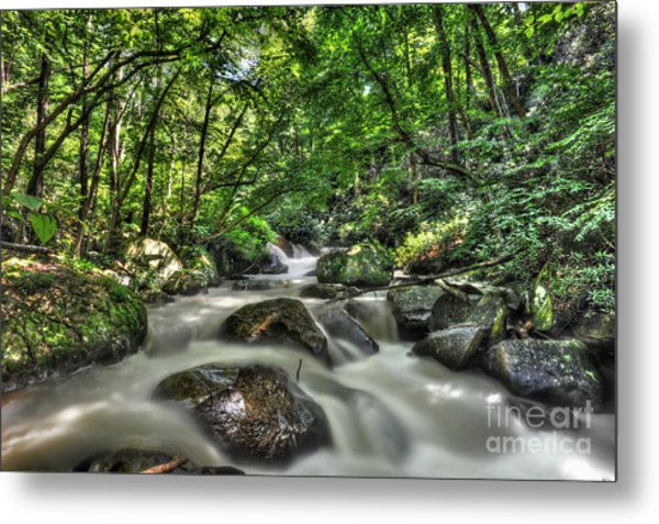 Metal Print featuring the photograph Flooded Small Stream  by Dan Friend