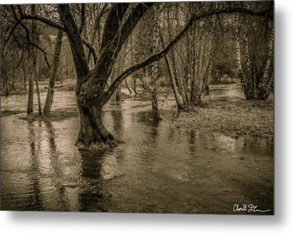 Flooded Tree Metal Print