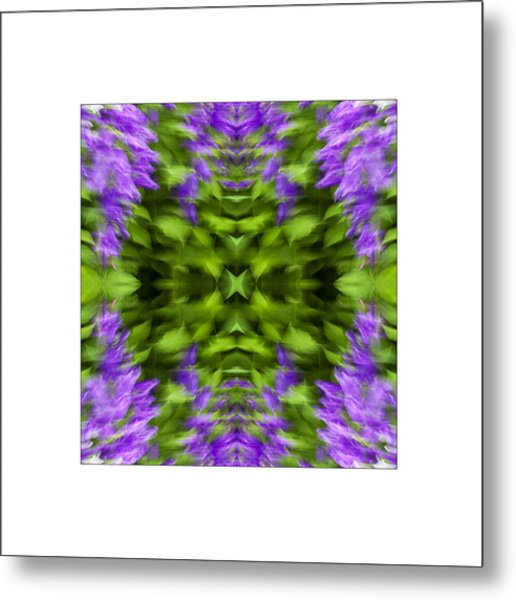 Floral Focus Metal Print by Don Powers