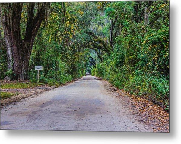 Florida Road Metal Print