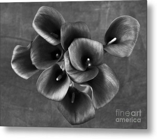 Flower #248 Metal Print