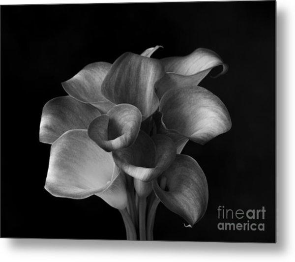 Flower #367 Metal Print