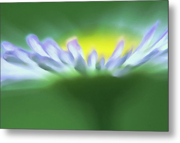 Flower Effect Metal Print
