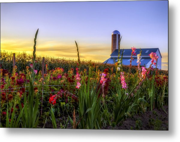Flower Farm Metal Print