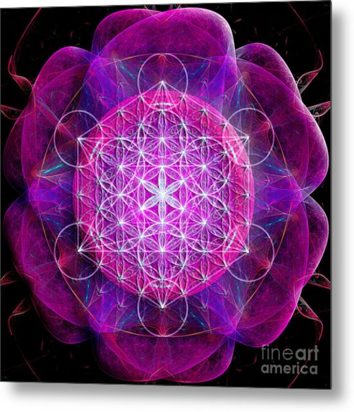 Flower Of Life No Two Metal Print