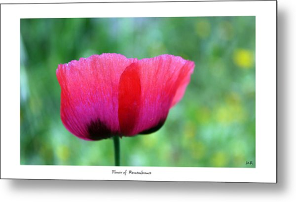 Flower Of Remembrance Metal Print