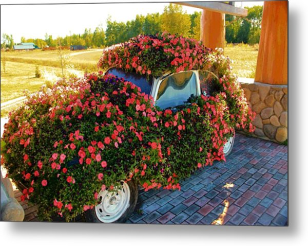 Flower Power Metal Print by Marv Russell