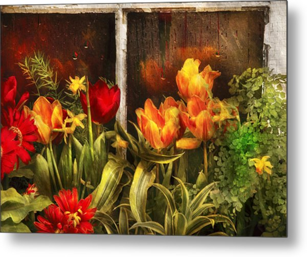 Flower - Tulip - Tulips In A Window Metal Print