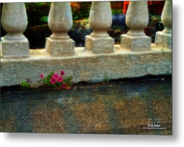 Flowers In The Cracks Metal Print by Dan Quam