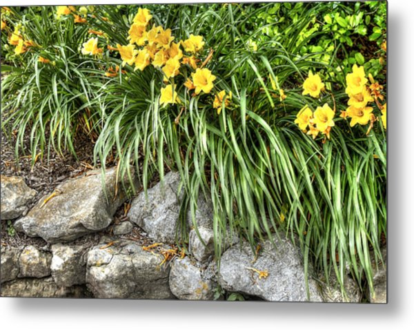 Flowers On The Edge Metal Print by Honour Hall