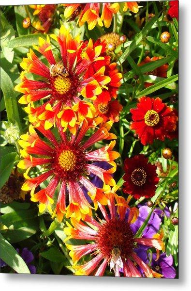 Flowers With Pollinators Metal Print by Van Ness