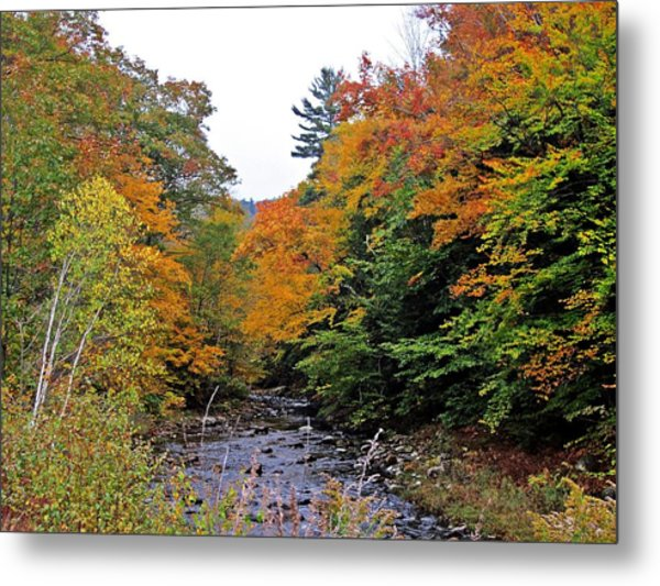 Flowing Into October Metal Print