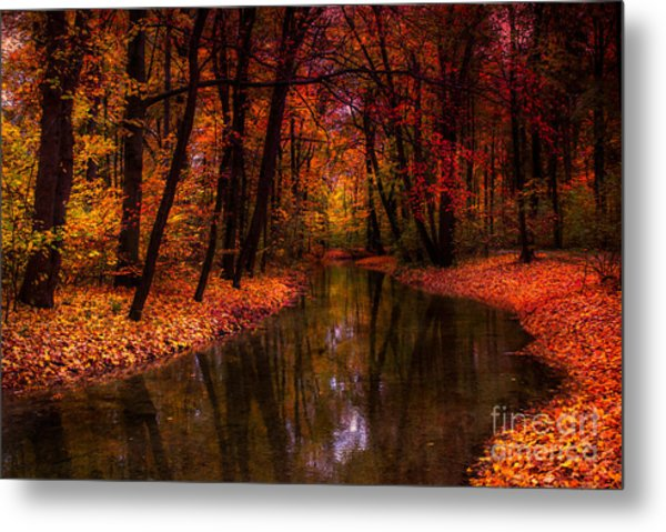 Flowing Through The Colors Of Fall Metal Print
