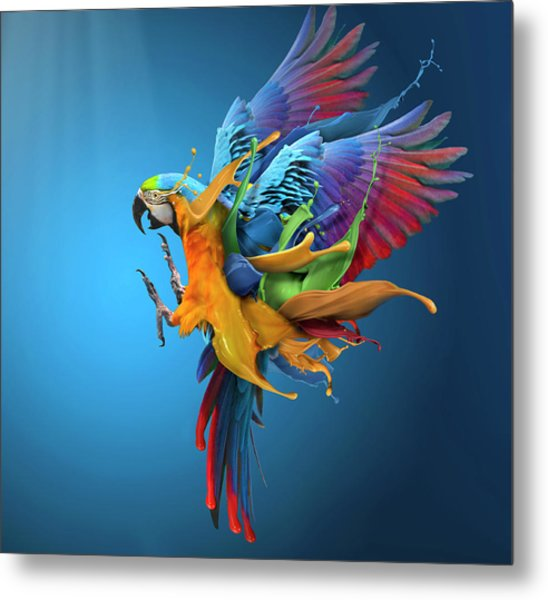 Flying Colours Metal Print by Sulaiman Almawash