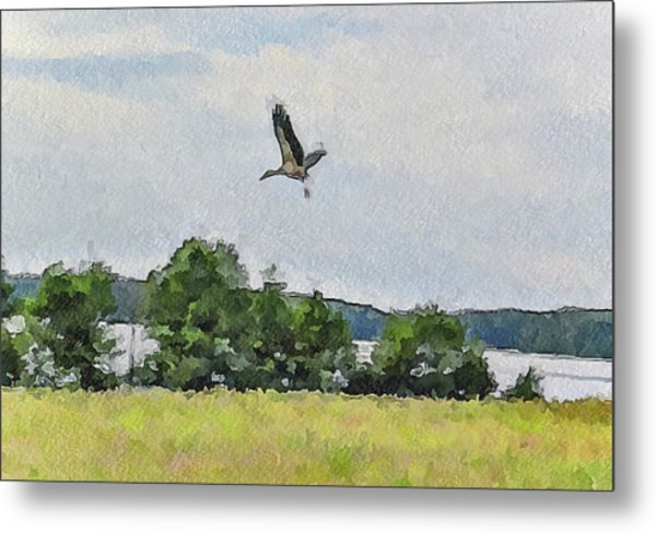 Flying Nature Metal Print by Yury Malkov