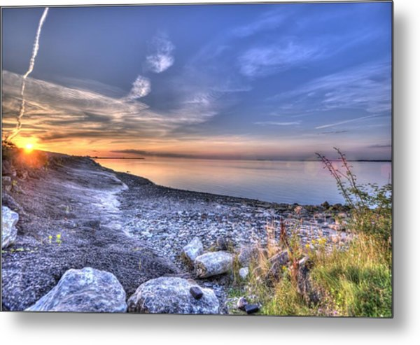 Flying To Warmer Climates Metal Print