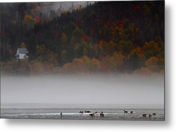 Fog Along The Cabot Trail During Autumn Metal Print