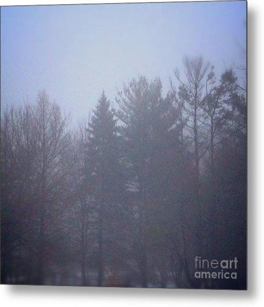 Fog And Mist Metal Print