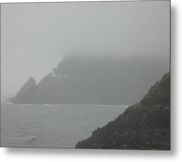 Fog At The Coast Metal Print by Yvette Pichette