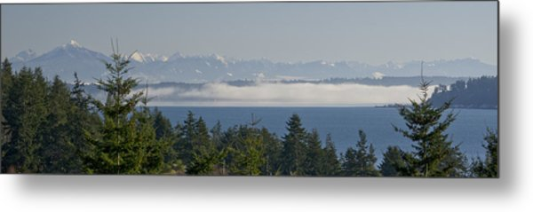 Fog Bank Metal Print