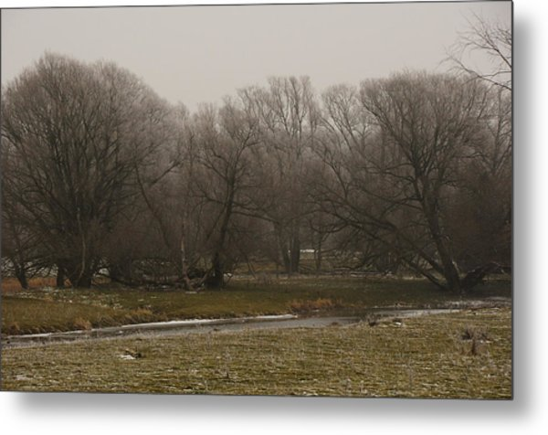 Fog Day Metal Print by BandC  Photography