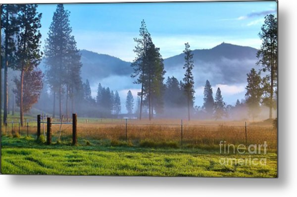 Fog Highlights Metal Print