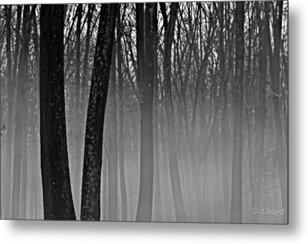 Fog In The Dark Forest Metal Print
