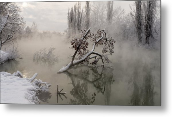 Fog Over The Water Metal Print