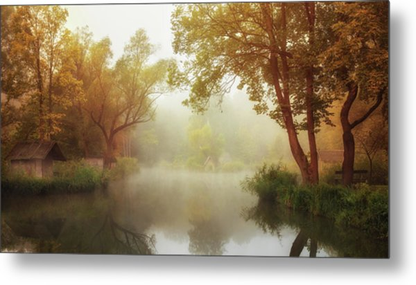 Foggy Autumn Metal Print