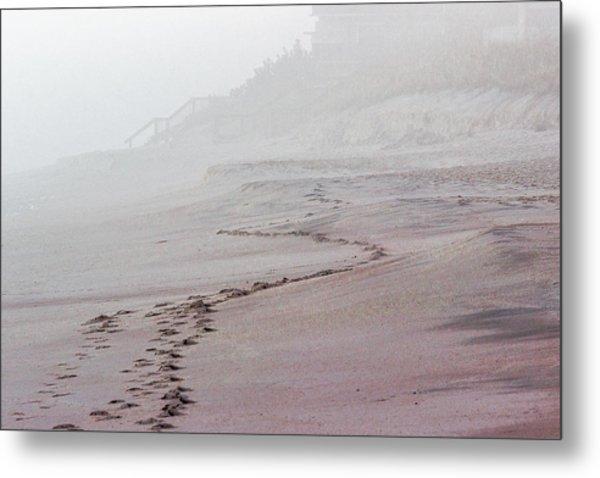 Foggy Beach At Dawn Metal Print
