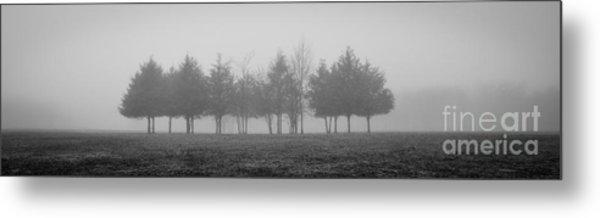 Foggy Day Metal Print
