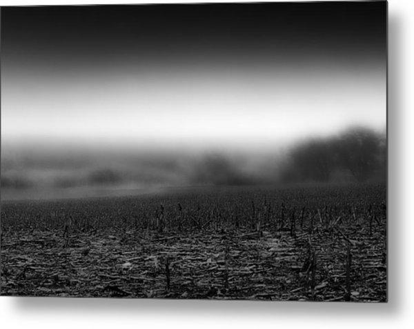 Foggy Field Metal Print