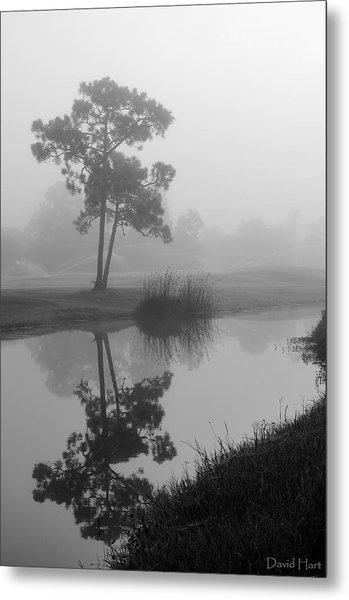 Foggy Morning 2 Metal Print
