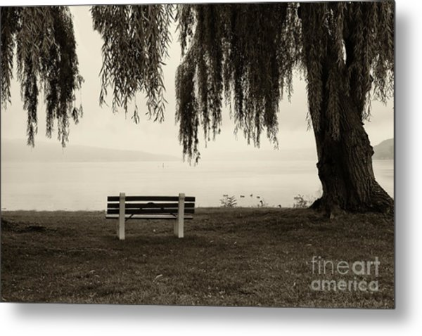 Foggy Morning At Stewart Park Metal Print
