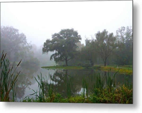 Foggy Morning At The Willows Metal Print