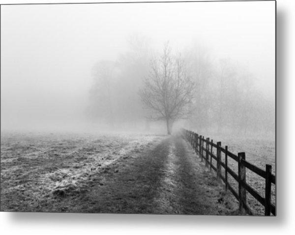 Foggy Morning. Metal Print