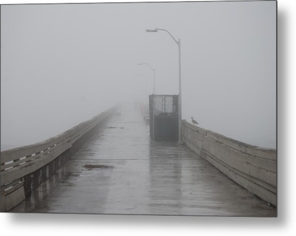 Foggy Morning Metal Print by Pamela Schreckengost