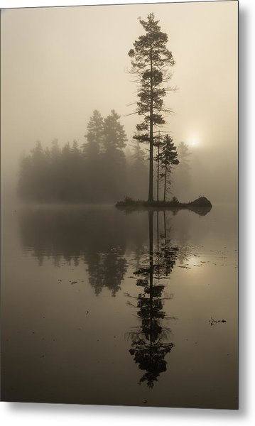 Foggy Morning Sunrise At The Lake Metal Print