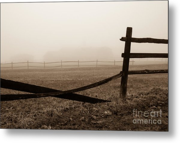 Foggy Pasture Metal Print