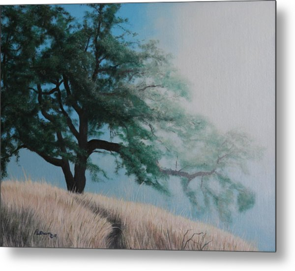 Fog's Morning Kiss Metal Print