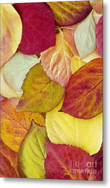 Foliage Quilt Metal Print