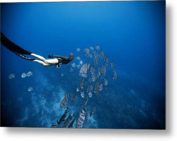Follow The Fish Metal Print by One ocean One breath