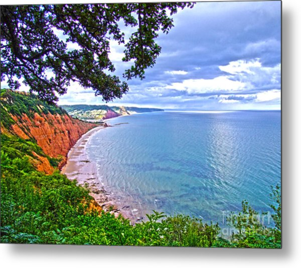 Footpath To Sidmouth Metal Print