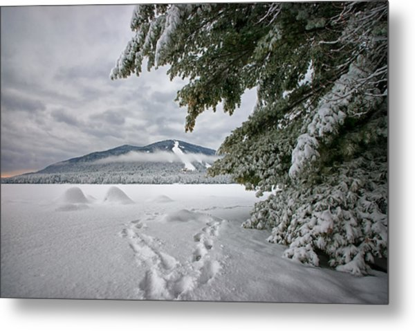 Footsteps To The Mountain Metal Print