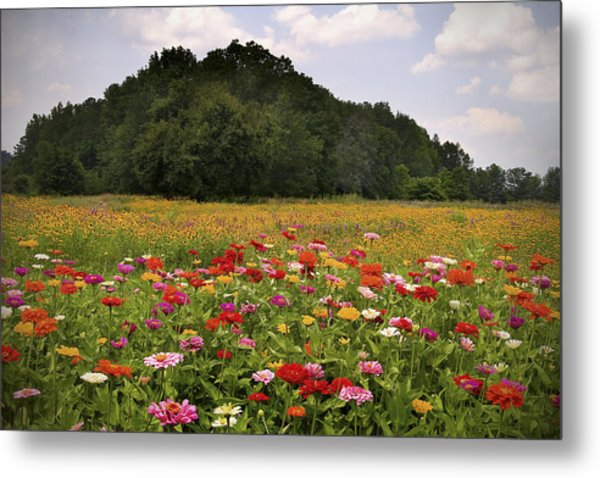 For The Beauty Of The Earth Metal Print
