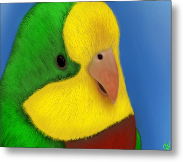 For The Birds Metal Print by Daniel Sallee